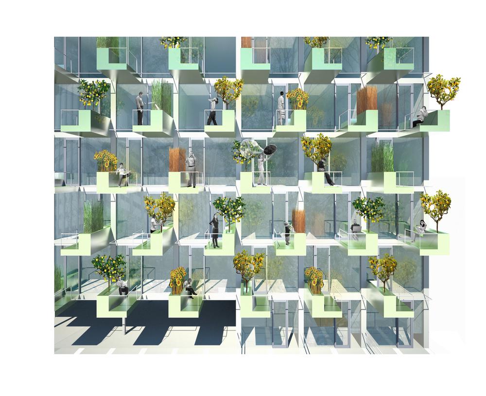 MicroGreens Image 4.jpg