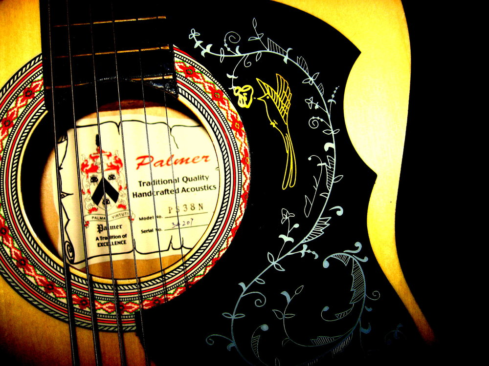 Palmer PS38N 3/4 size Folk Guitar close-up by amberrgerr, Creative Commons Attribution 3.0 Unported