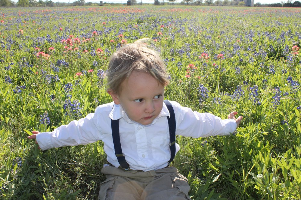 """Judah, lounging in a field of Bluebonnets (and Indian Paintbrushes). It's pretty much tradition to take yearly """"bluebonnet pictures"""" here!"""
