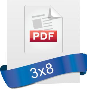 PDF icons_3x8.png