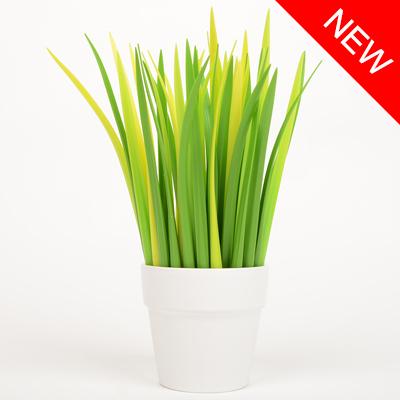 GrassPen_01.jpg