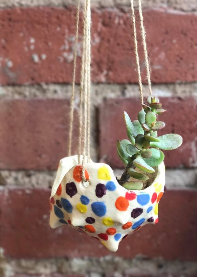 Succulent Clay Pots - Create a hanging clay pot to house your succulents indoors for the winter