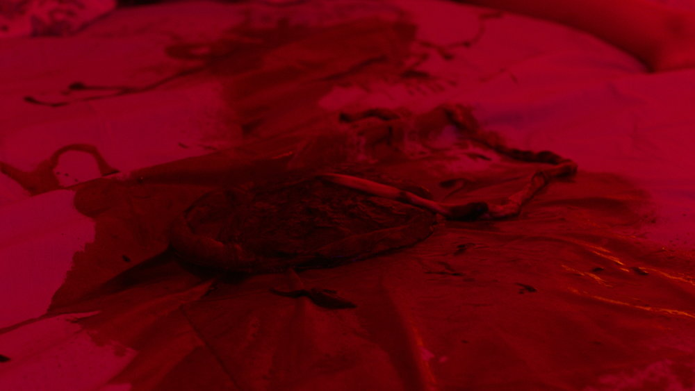 Placenta - Red Christmas Photo by Douglas Burgdorff.jpeg