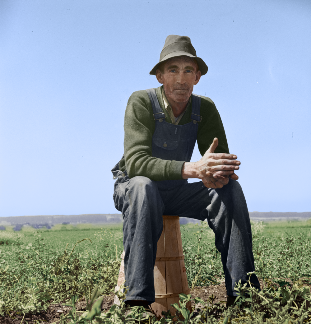 Strawberry Picker, 1937