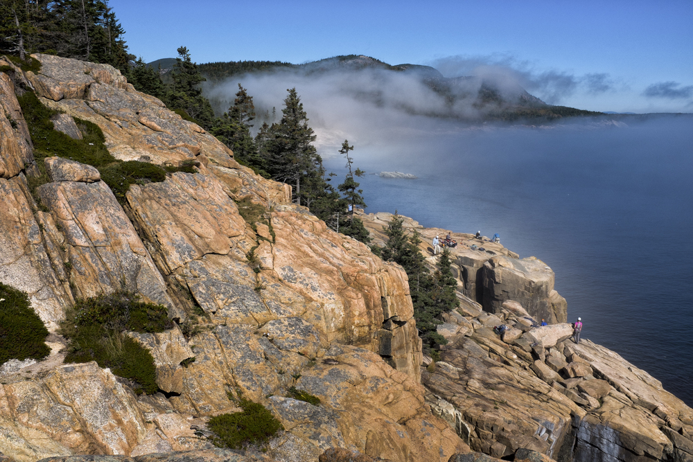 Otter Cliffs Fog, Acadia National Park, Maine