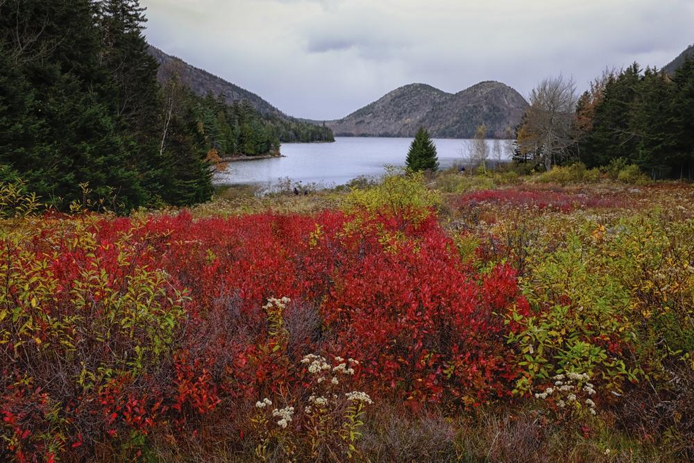 Autumn Foliage Jordan Pond Acadia National Park
