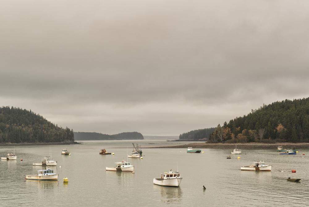 Bucks Harbor, Machiasport, Maine