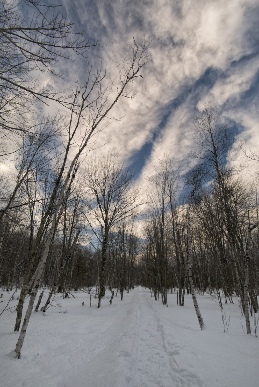 Jesup Path, Acadia National Park, Maine