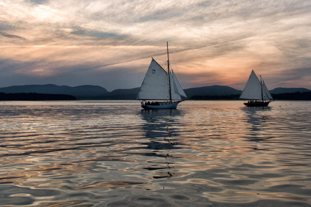 Friendship Sloops at Sunset, Western Way, Mount Desert Island, Maine