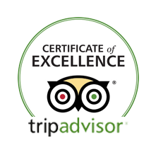 CertificateOfExcellence_NoDate.png