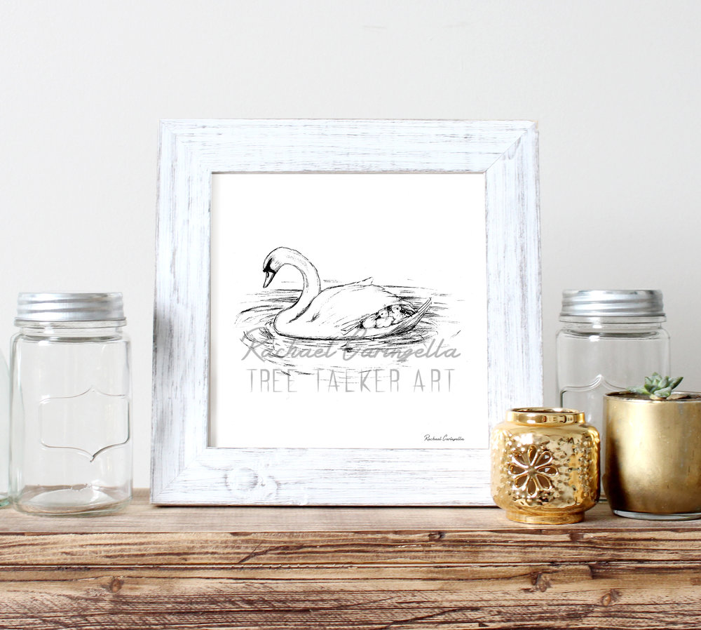 Swan Family Drawing | Tree Talker Art