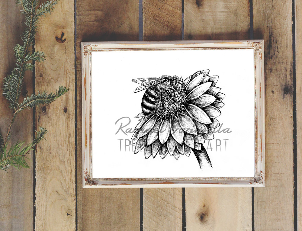 Honey Bee on a Daisy Art Print | Tree Talker Art