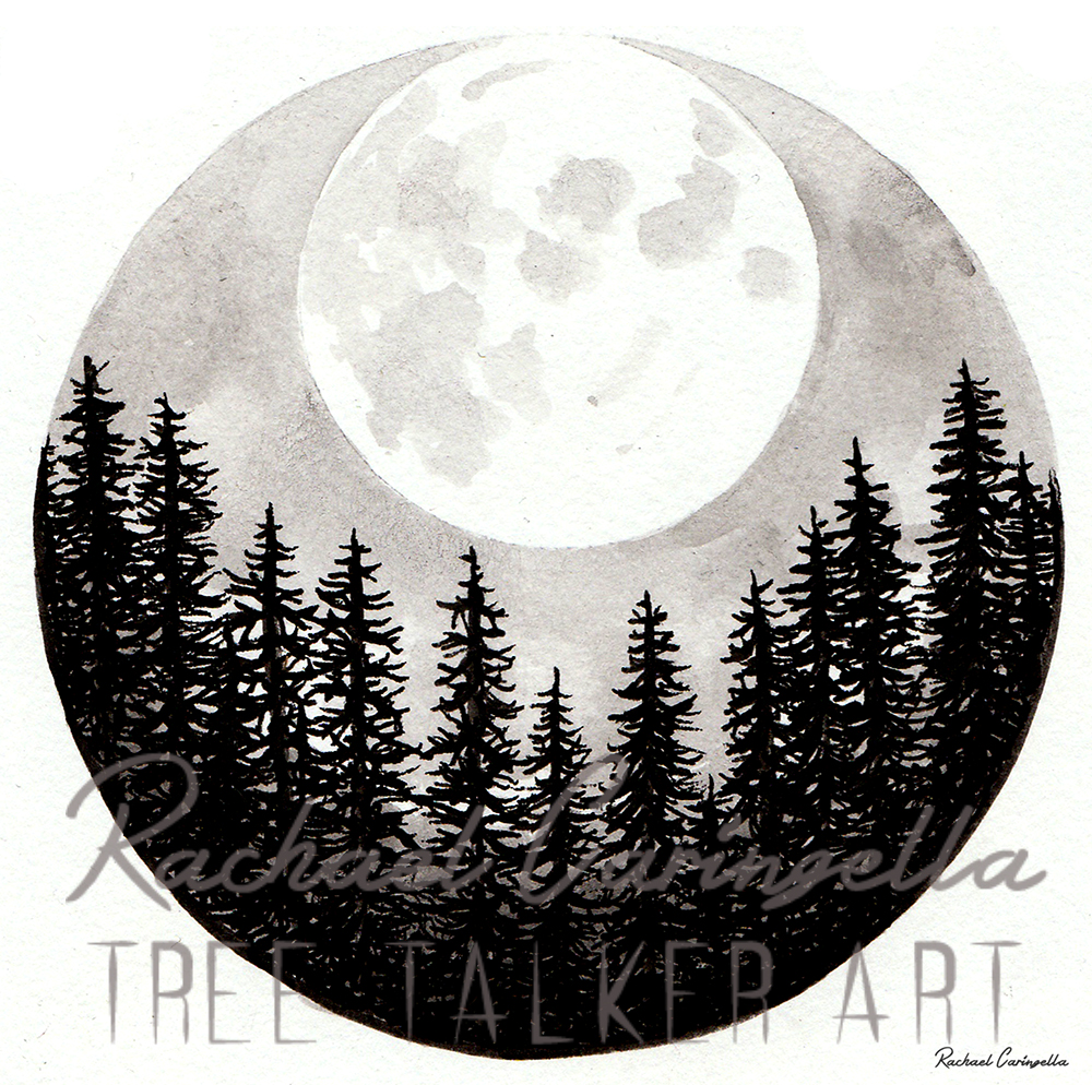 Super Moon Rising  | Tree Talker Art