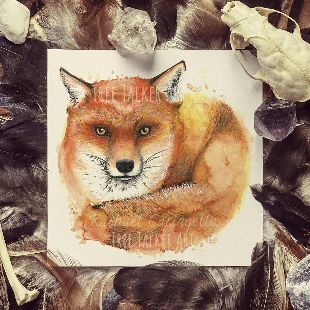 Fox Watercolor Mixed Media Painting | By Rachael Caringella | Tree Talker Art