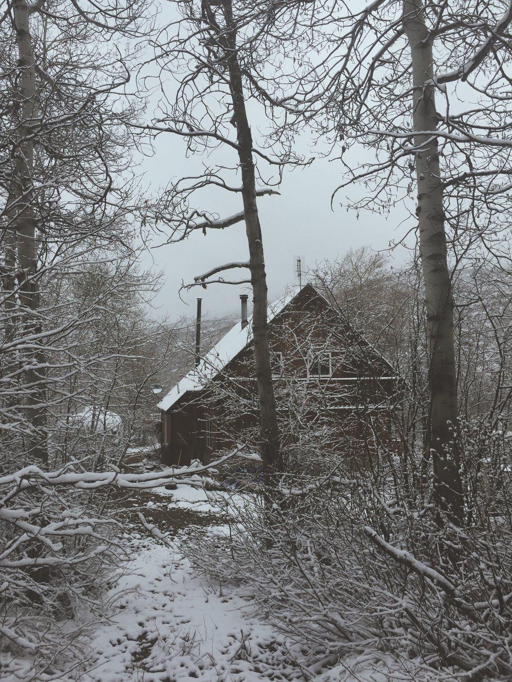 Wintery Cabin   Cabin Life   Tree Talker Art