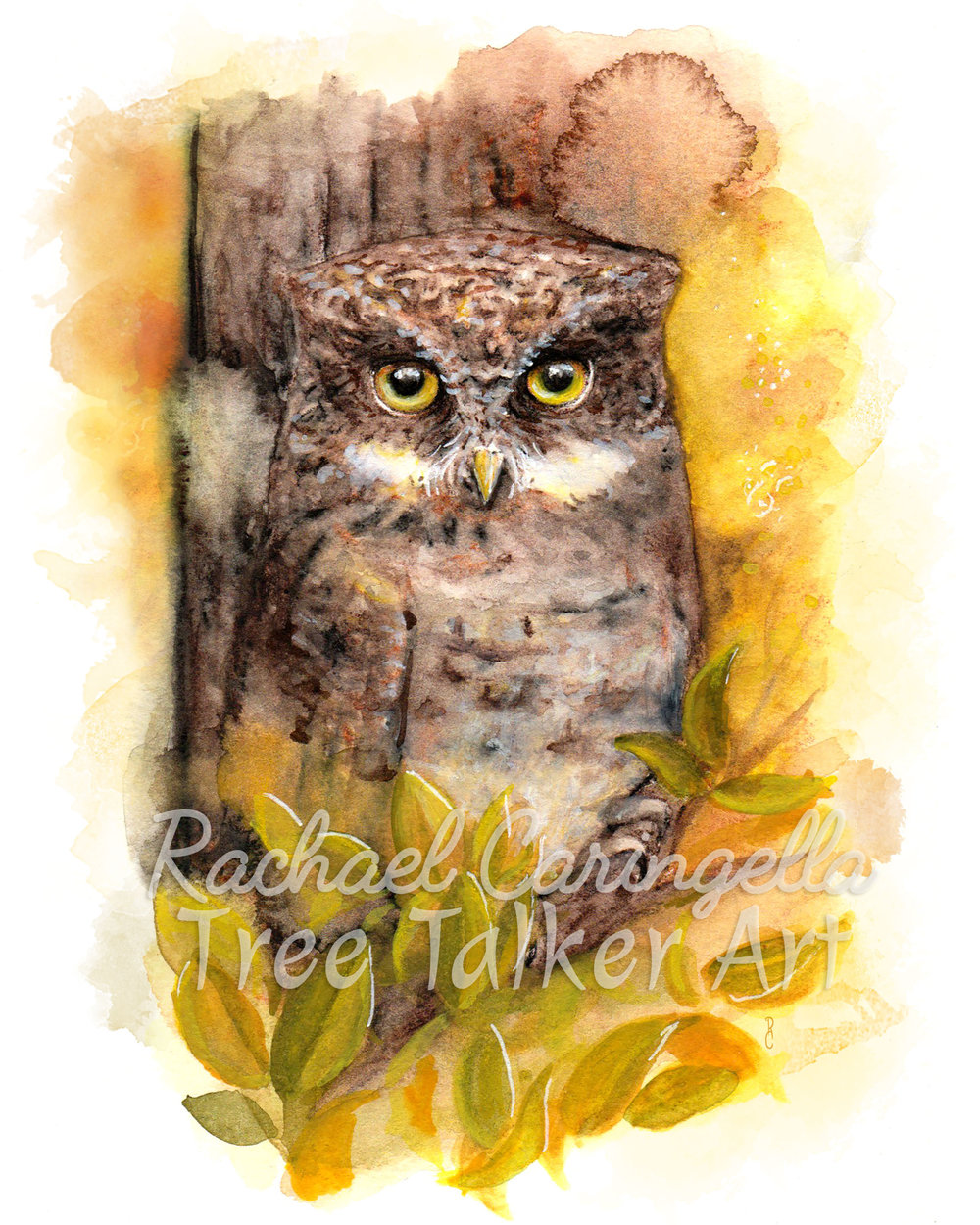 Autumn Owl Watercolor Painting- Tree Talker Art