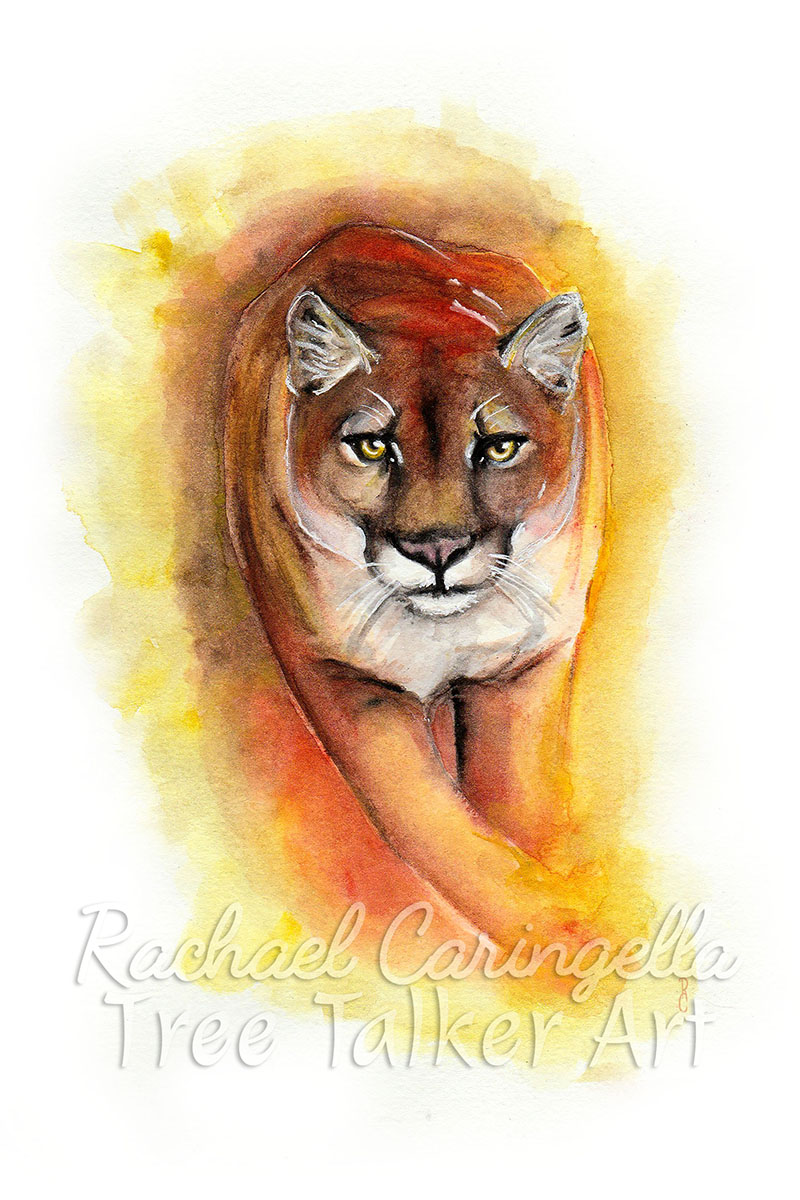 Charging Cougar Watercolor Painting - Tree Talker Art