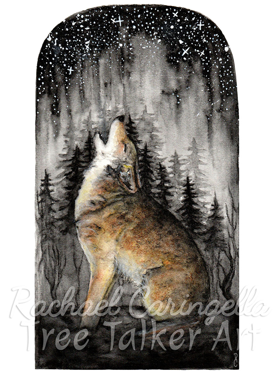 Coyote Skies - Watercolor Painting by Rachael Caringella | Tree Talker Art