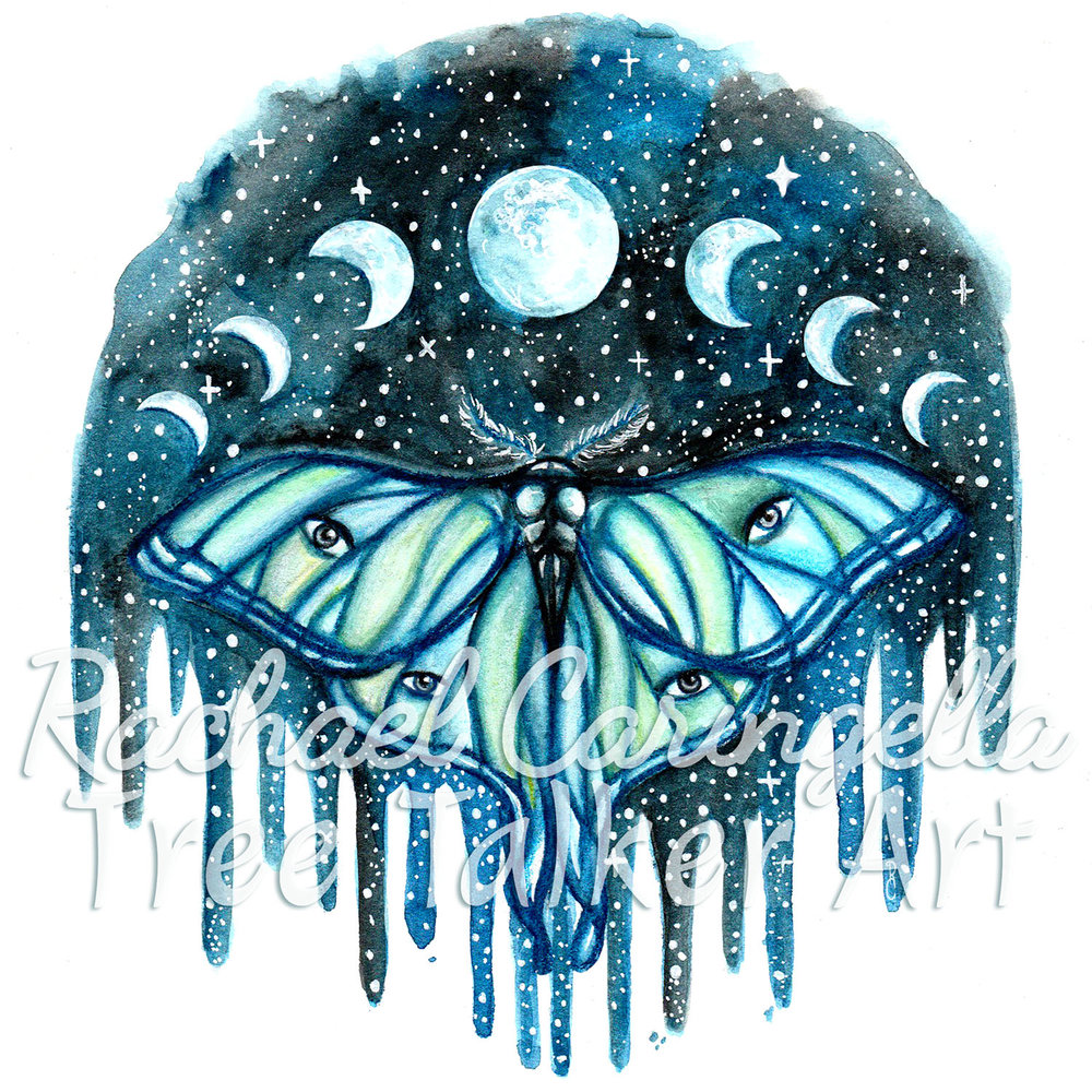 Luna Moth Moon Phase Watercolor Painting - By Rachael Caringella Tree Talker Art