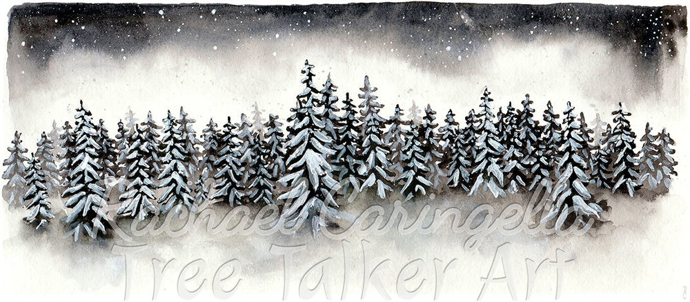 Winter Forest Scene | Rachael Caringella Watercolor | Tree Talker Art