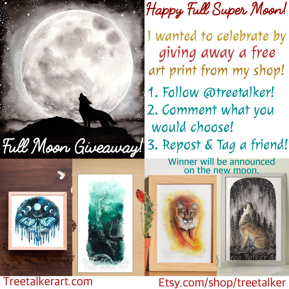 Art Print Giveaway | Tree Talker Art