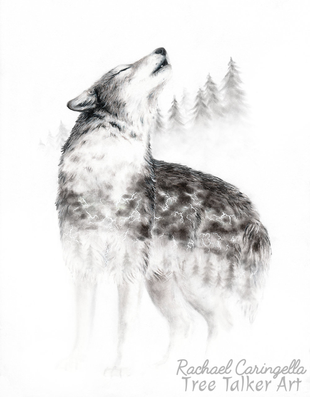 Mourning Song Wolf Howl | Rachael Caringella Tree Talker Art