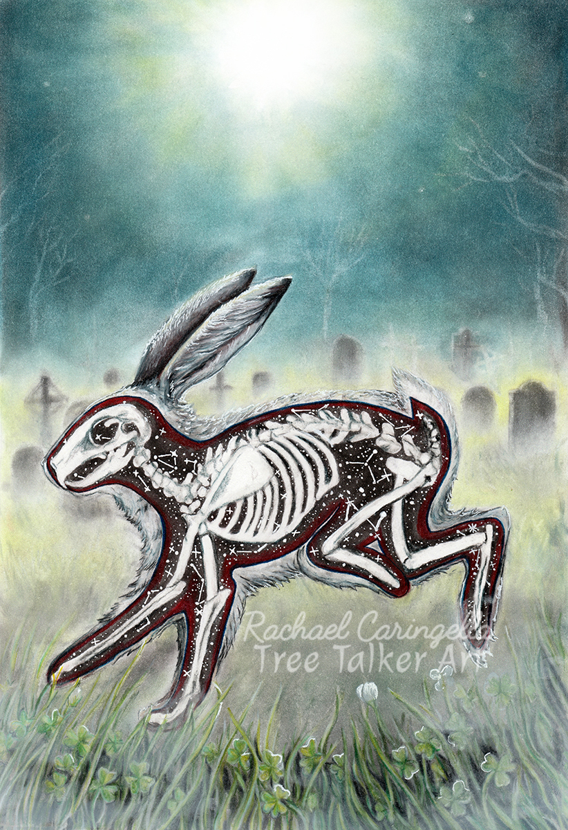Lucky Bones | Rabbit Skeleton Art | Tree Talker Art