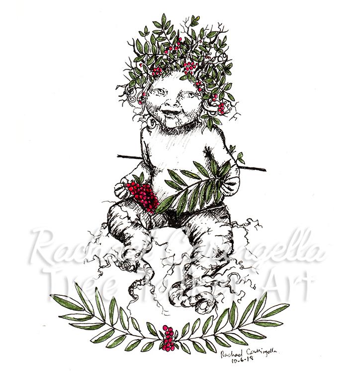 Rowan Mandrake Baby Inktober 2018 Illustration of a Baby Mandrake Rowan