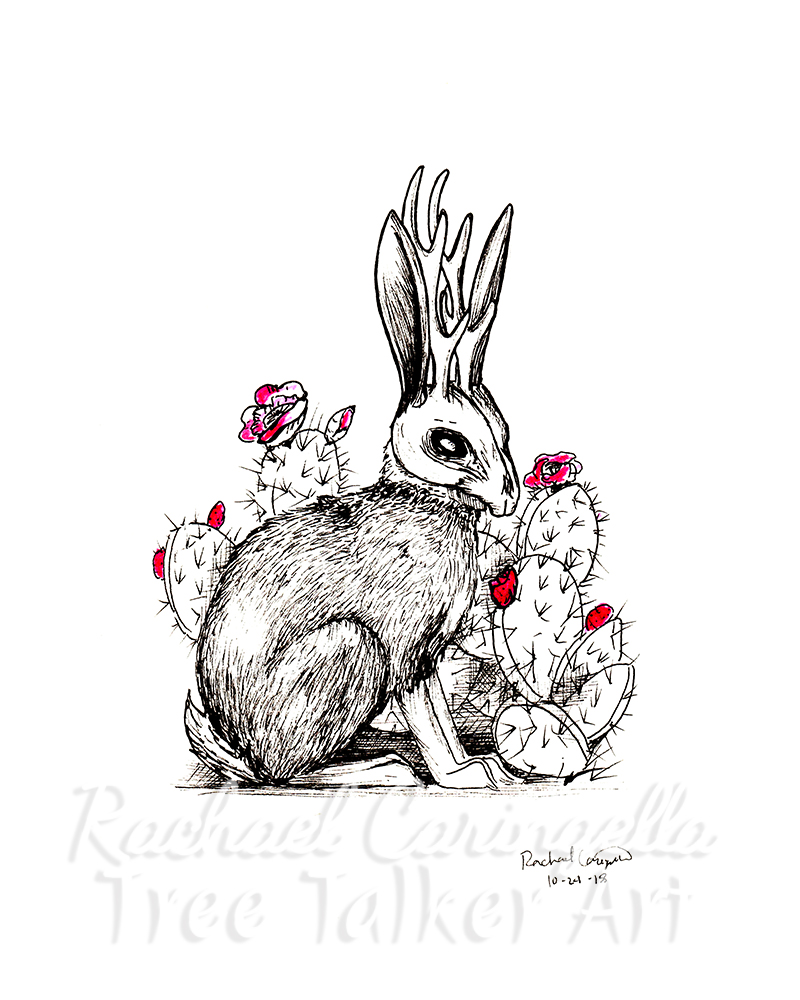 Jackalope Inktober 2018 Illustration of a Jackalope