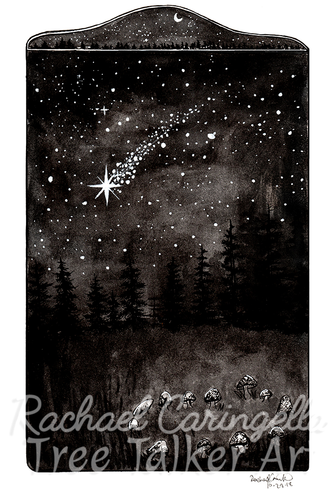 Shooting Star Wish Inktober 2018 Illustration of a Shooting Star Fairy Ring