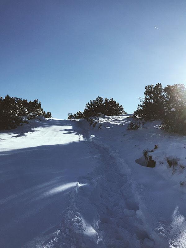 Snowed In - Desert Off Grid Life - Tree Talker Art