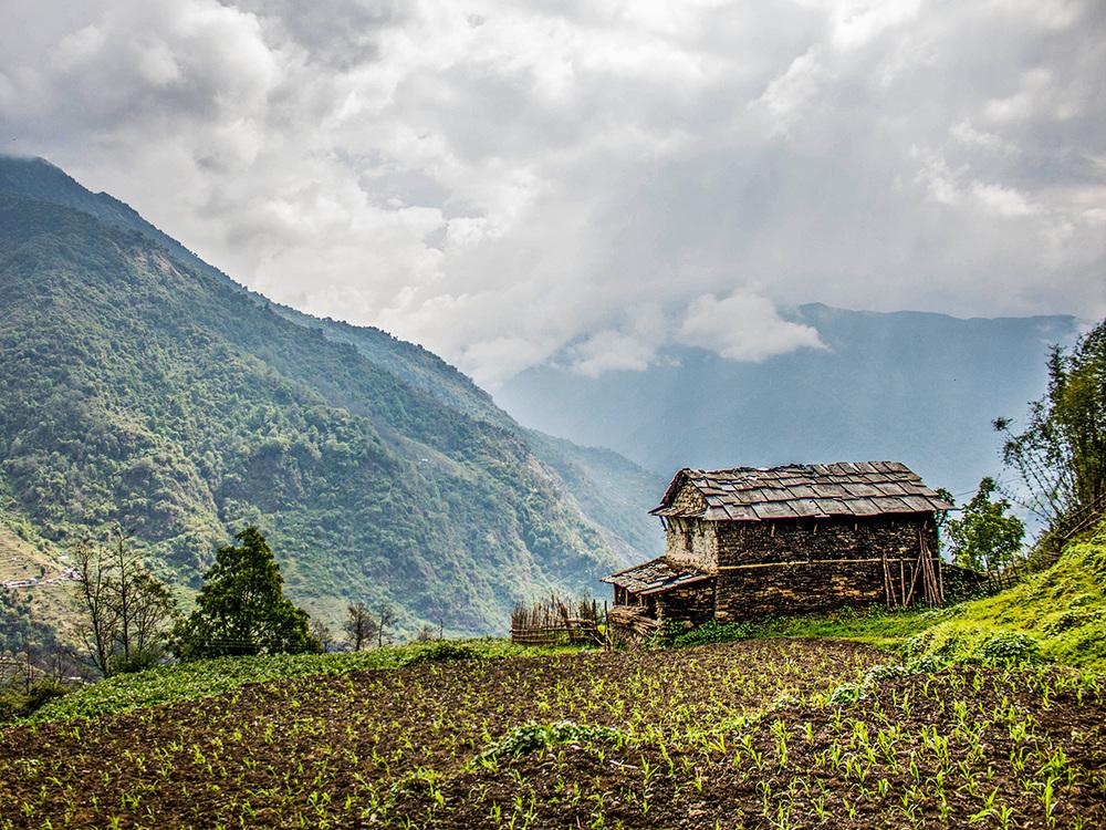 Annapurna Trail  |  Nepal