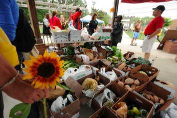 2009 Farmer Foodshare Challenge