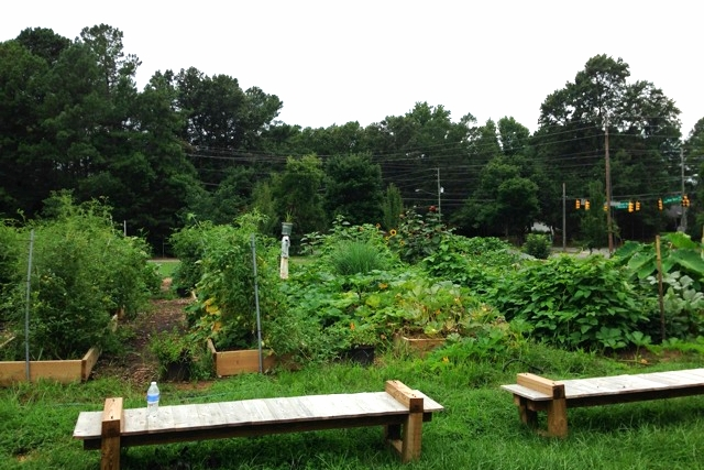 Beautiful community garden