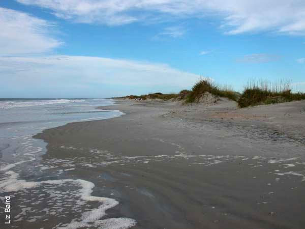 A Weekend at the Beach: Kure or Topsail Two North Carolina beach weekend getaways in either Kure Beach or Topsail Island. Nothing could be finer than the beach in Carolina any time of year! Provided by: Darin Knapp and Julia Kemp Smith