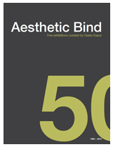 Aesthetic Bind   Five exhibitions curated by Geeta Kapur