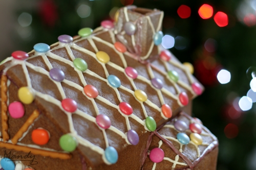 Gingerbread House What The Fruitcake