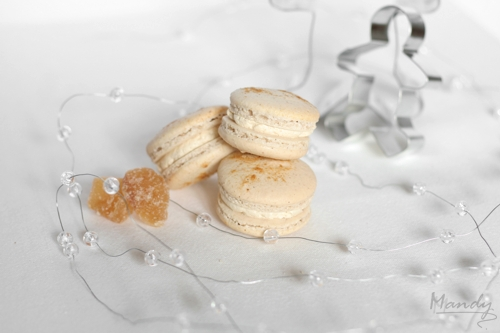 Gingerbread Macaron 03.jpg