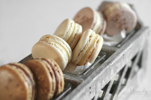 Coffee with Milk Choc Ganache; Almond with Almond White Choc Ganache; Pecan with Maple Buttercream