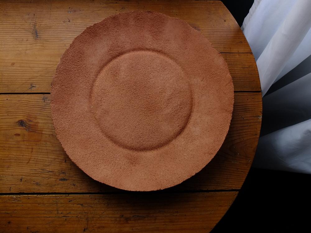 Daniel van Dijck Salmon colored plate