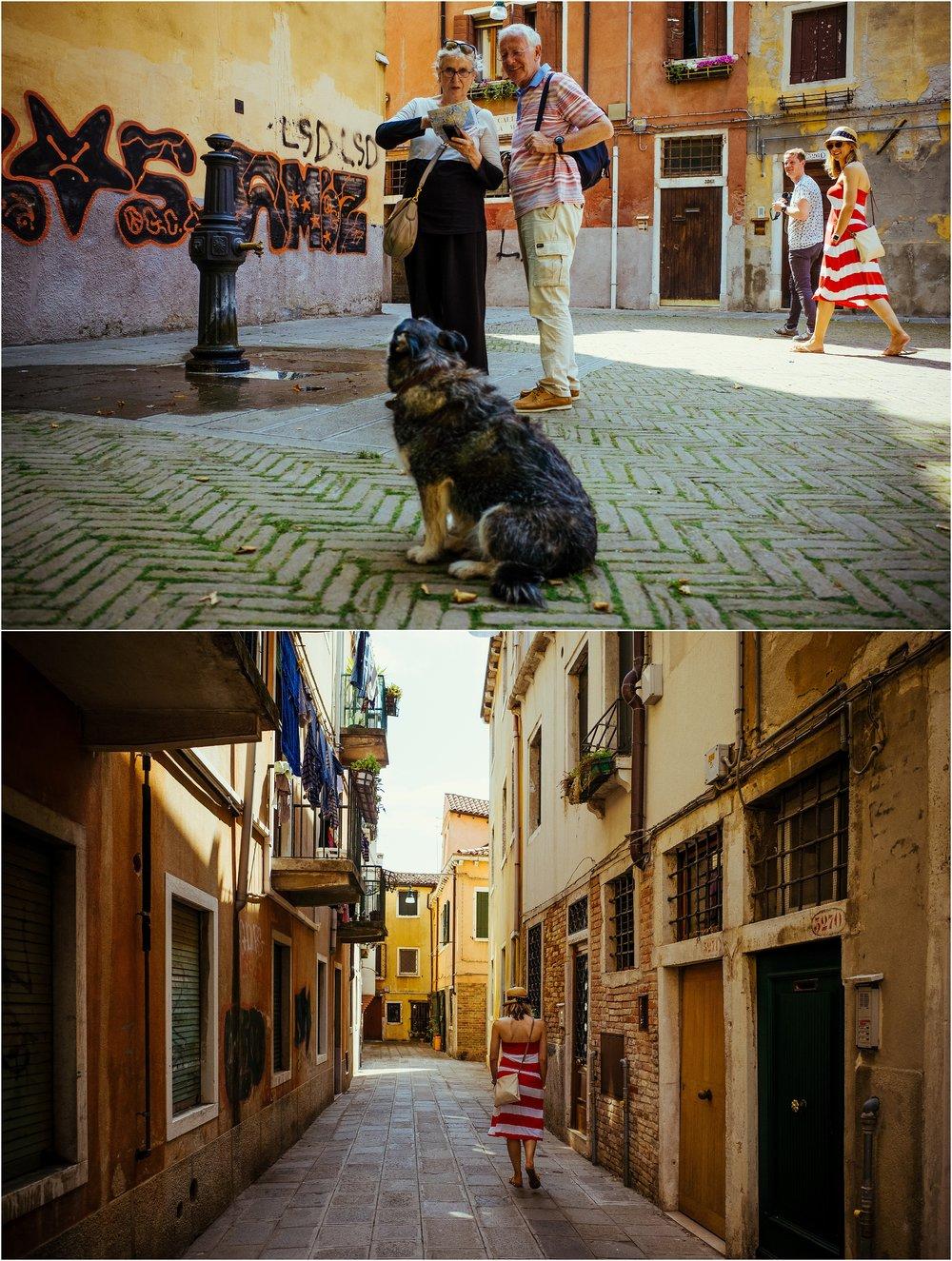 dogs in venice_0035.jpg