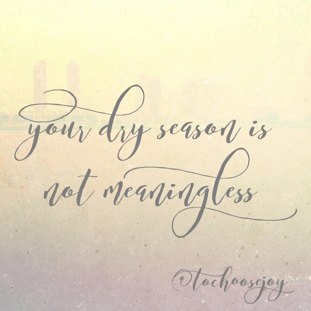 Choosing Joy God is in the desert_Your dry season is not meaningless_Becky Bennett