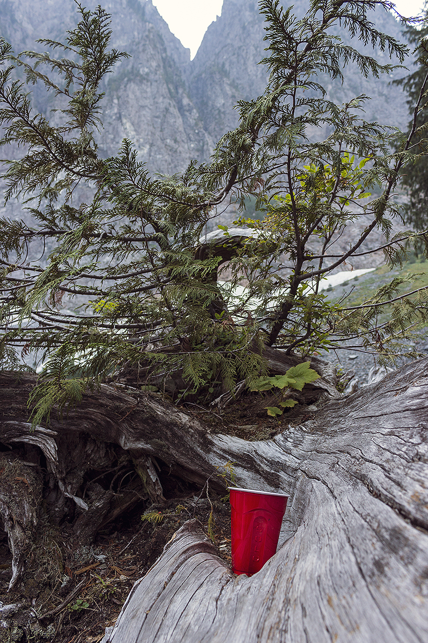Red solo cup near the top of Mount Index, WA.
