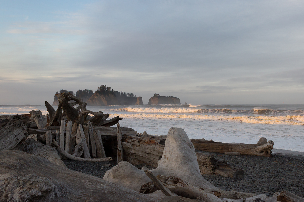 Driftwood shelter on Rialto Beach at sunrise near La Push, WA.