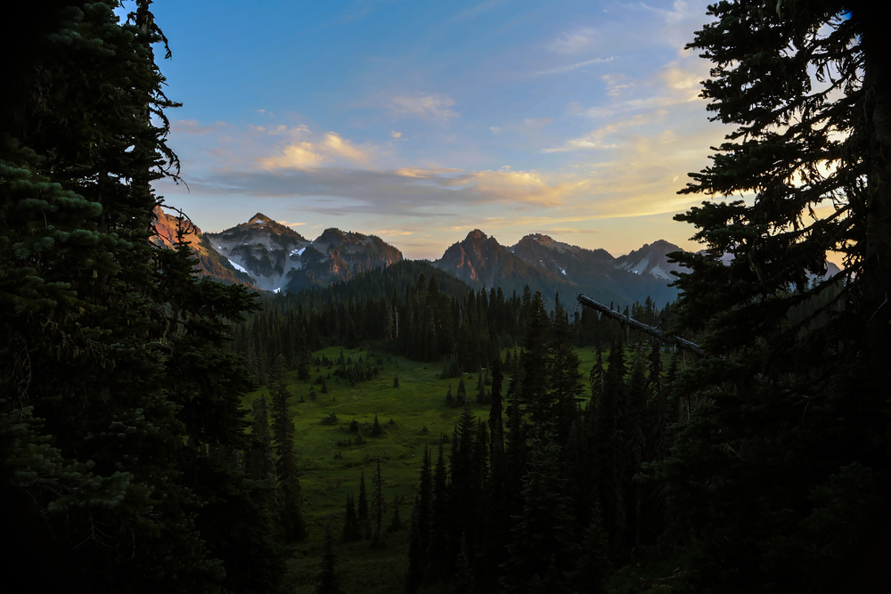 20130821-Mount-Rainier-Day-1-163.jpg