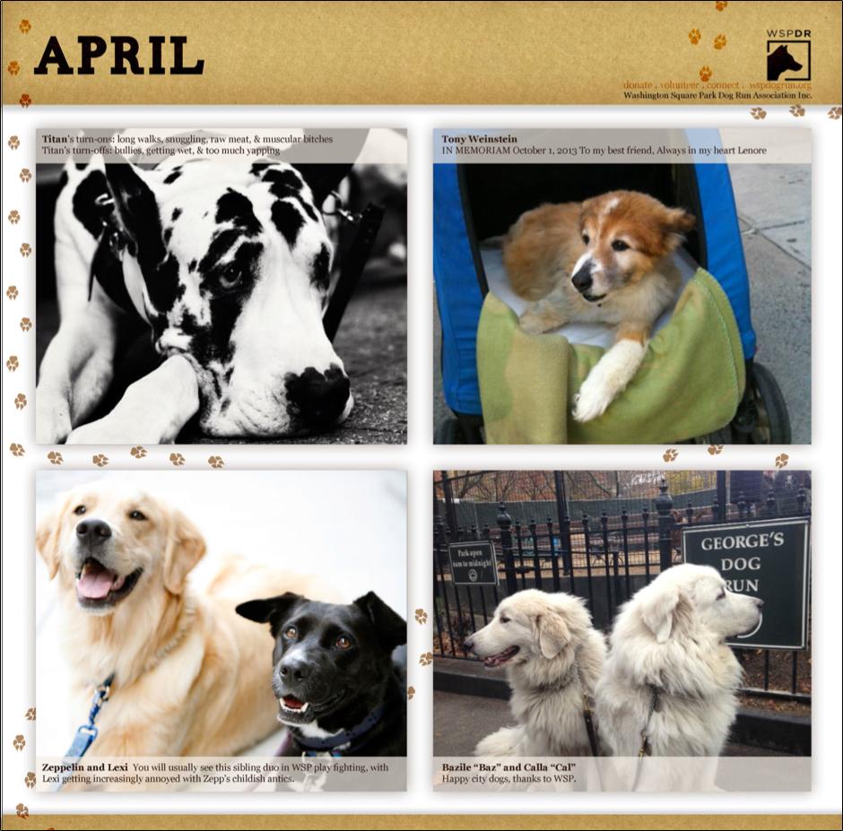 CalendarPicsApril.jpg