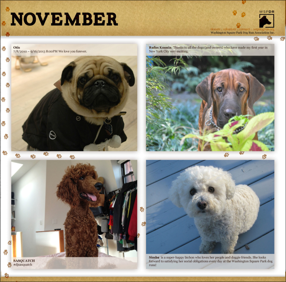 CalendarPicsNovember.jpg