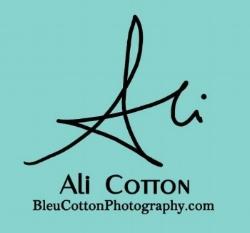 Ali Cotton Logo