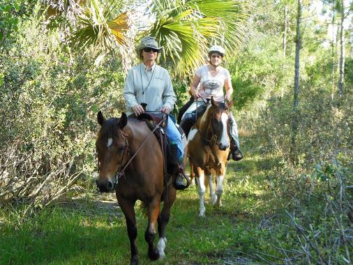 "Kathy Brown Riding ""Moonpie"""