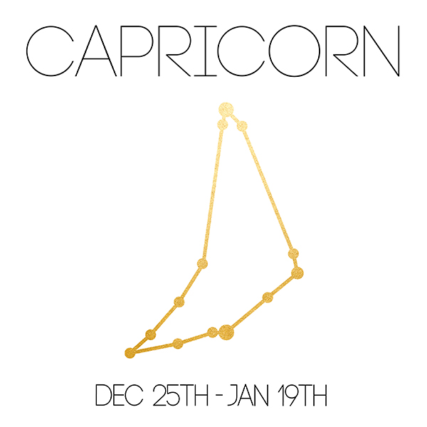 Capricorn_About_Website-01.jpg